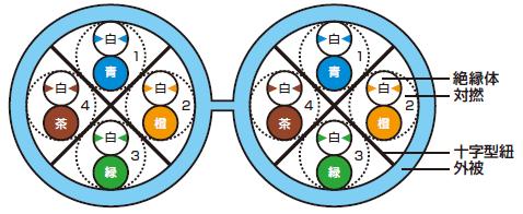 D-TPCC6 断面図